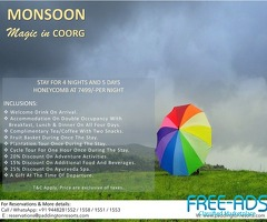 Book now to save more // Paddington Resort  & Spa Coorg!!