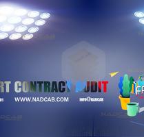 Smart Contract Audit